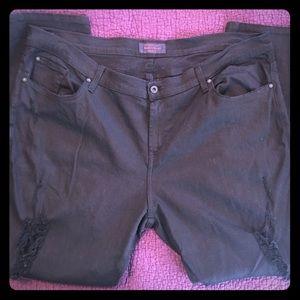 James Jeans Plus Size 24